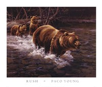 Rush Fine Art Print