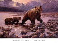 Evening Dip Fine Art Print