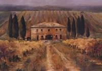 Toscana Vigna Fine Art Print