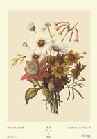 Seasons Fine Art Print