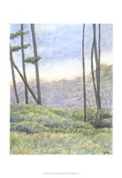 Tranquil Horizon II Fine Art Print