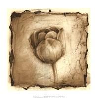 Floral Impression III Framed Print