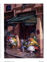 Fleurs Au Soleil, Paris Fine Art Print