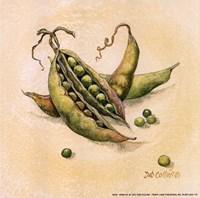 Peas Fine Art Print