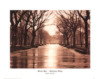Rainy Day - Central Park Fine Art Print