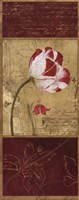 Tulip Journal I Fine Art Print