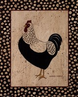 Whiteback Chicken Fine Art Print