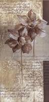 Les Fleur Elegant I Framed Print
