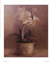 Olivia's Flowers IV Framed Print
