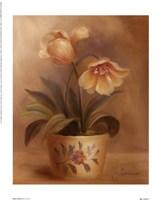 Olivia's Flowers II Framed Print