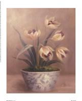 Olivia's Flowers III Framed Print