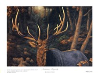 Autumn Majesty Fine Art Print