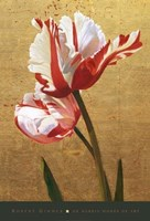 Flora Fine Art Print