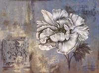 Inspired Blossom II Fine Art Print
