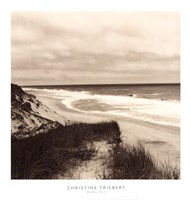 Wellfleet Dune Fine Art Print