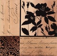 Noir Et Creme II Fine Art Print