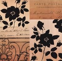 Noir Et Creme IV Fine Art Print