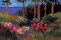 Northern Summer Fine Art Print