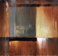 Sonoran Shadows III Framed Print