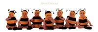 Bumblebee Babies Framed Print