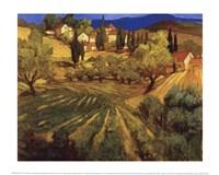 Mount Ventoux Fine Art Print