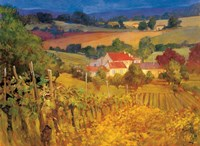Vineyard Hill Fine Art Print