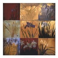 Iris Nine Patch II Fine Art Print