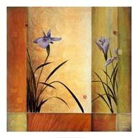 Terra Cotta Garden Fine Art Print