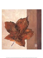 Leaf Impression - Rust Framed Print