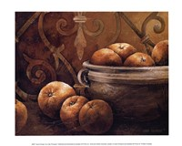 Tuscan Orange Fine Art Print