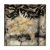Nature's Breath III Framed Print