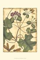 Printed Rustic Garden I Fine Art Print