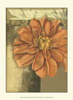 Small Ethereal Bloom II Fine Art Print