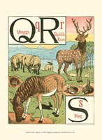 Noah's Alphabet V Fine Art Print