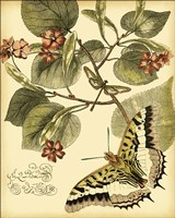 Mini Whimsical Butterflies I Fine Art Print