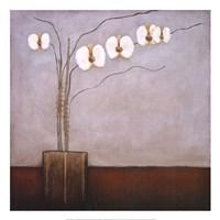 Orchidee II Fine Art Print