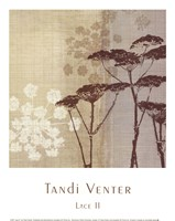 Lace II Fine Art Print