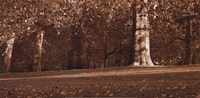 Hyde Park Afternoon II Framed Print