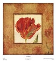 Les Tulipes I Fine Art Print