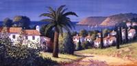 Palm Trail Fine Art Print