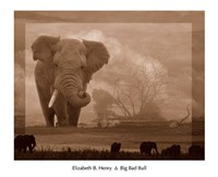 Big Bad Bull Fine Art Print