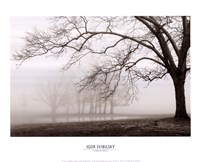 Layers Of Trees I Fine Art Print