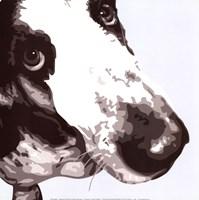 Bassett Hound Framed Print