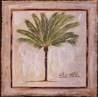Date Palm Fine Art Print