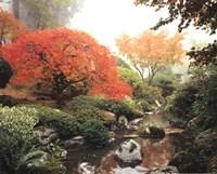 Japanese Garden I Framed Print