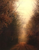 Road Of Mysteries I Fine Art Print