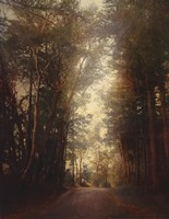 Road Of Mysteries II Framed Print