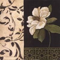 Negro Y Blanco Simplicidad I Fine Art Print