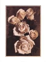 Gathering Roses Fine Art Print