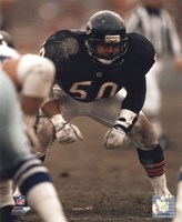 Mike Singletary Defensive Stance Fine Art Print